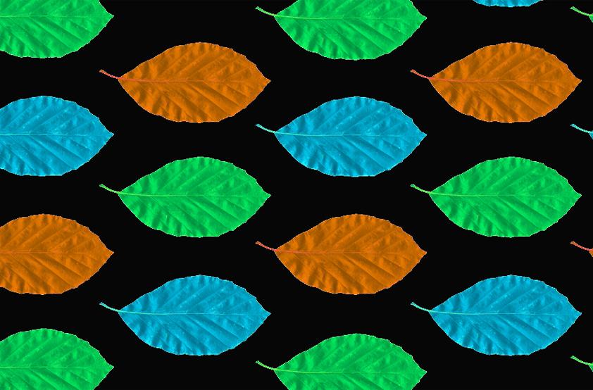 Beech Bar Fabric