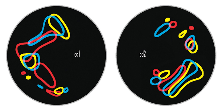 TM 36 disc layouts 2