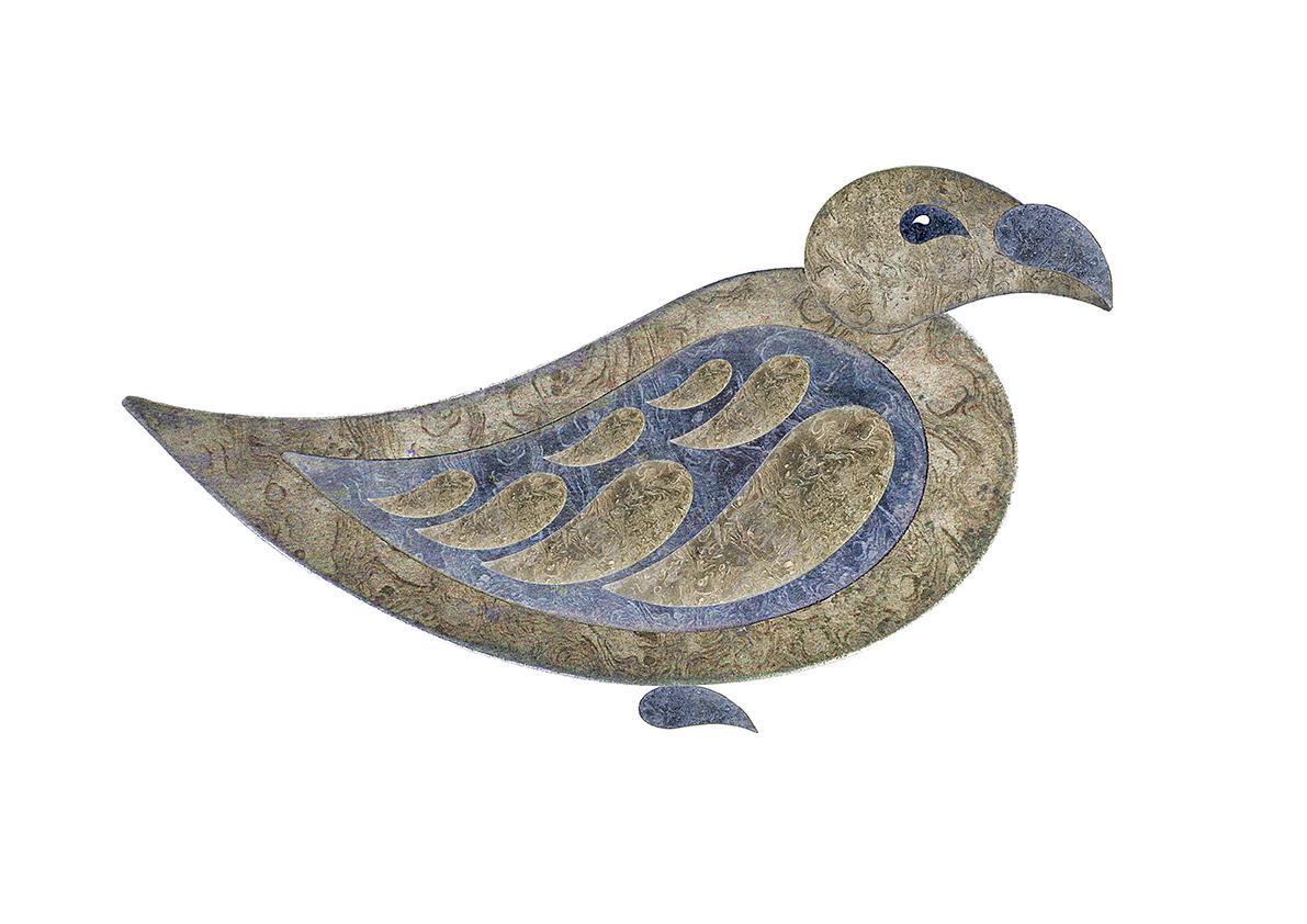 Paisley pigeon 1a