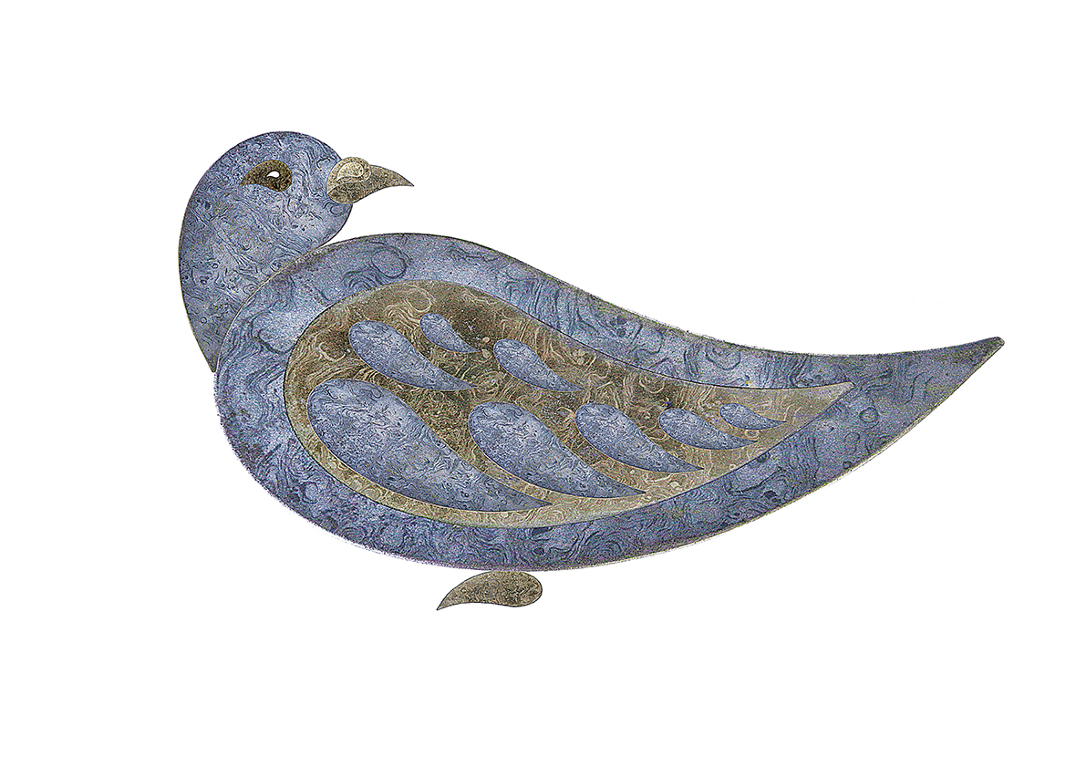 Paisley pigeon 3a
