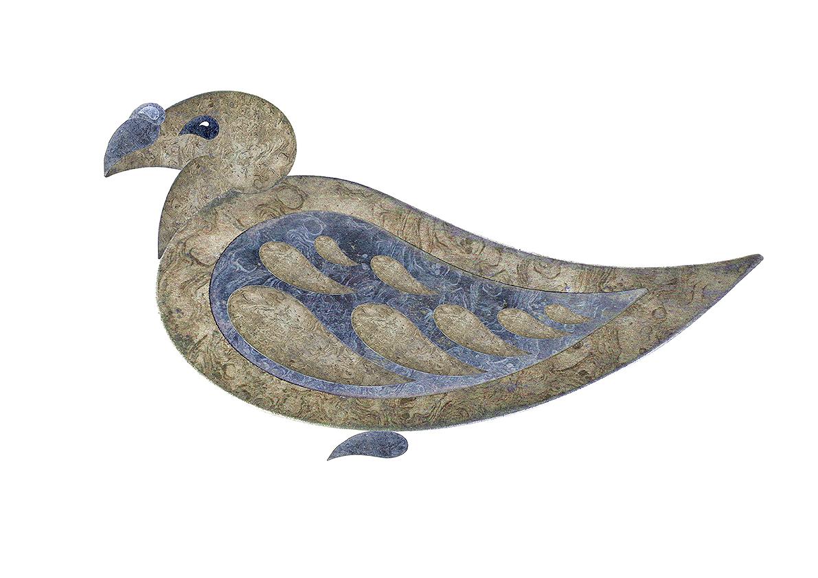 Paisley pigeon 4b